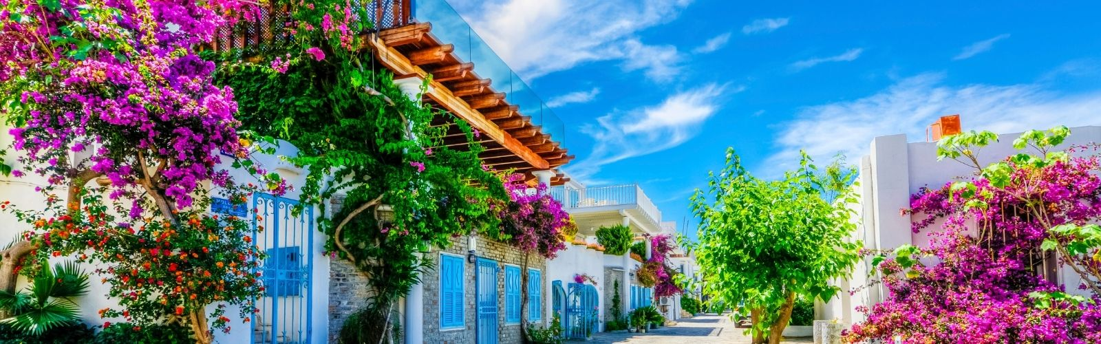 A beauty beyond time: Bodrum
